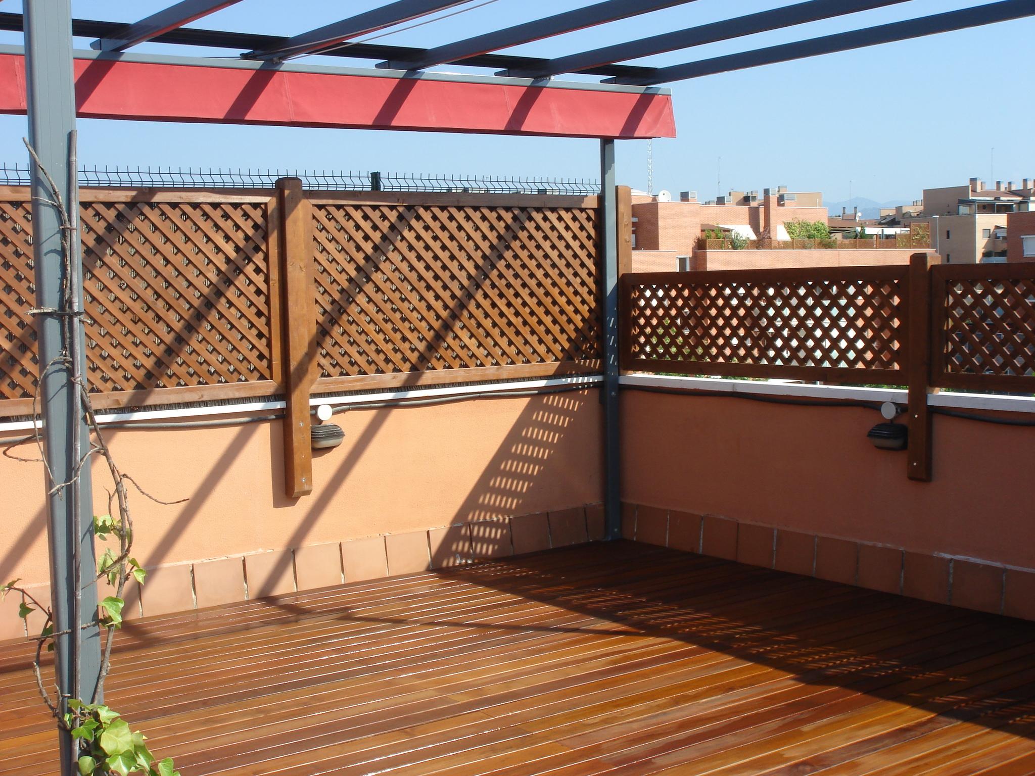 Celosias palos en danza for Celosia terraza